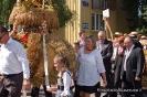 Powiatowe Święto Plonów 2013-24