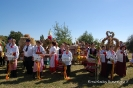 Powiatowe Święto Plonów 2013-33